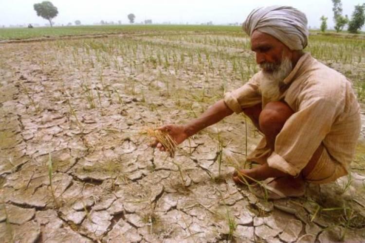 ਪੰਜਾਬ ਵਿਚ ਧਰਤੀ ਹੇਠਲਾ ਪਾਣੀ ਹਰ ਸਾਲ 0.37 ਮੀਟਰ ਦੀ ਦਰ ਨਾਲ ਥੱਲੇ ਜਾ ਰਿਹਾ